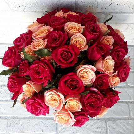 51 роза россия