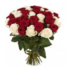 25 роз эквадор бело-красные