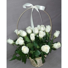 19 белых роз эквадор в корзине