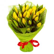 Тюльпаны желтые 25 шт